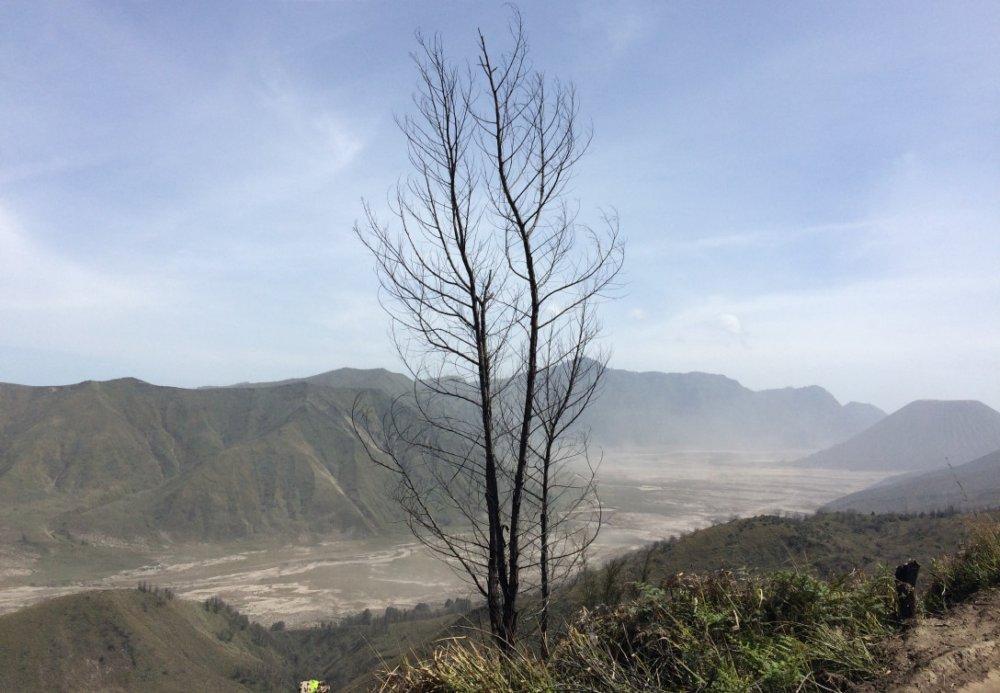 Prachtige vergezichten over Sea of Sand richting Cemoro Lawang